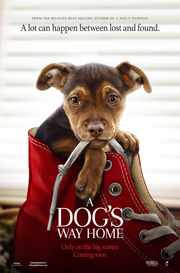 de64c1f7d A Dog's Way Home is an upcoming American family drama film directed by  Charles Martin Smith and written by W. Bruce Cameron and Cathryn Michon, ...