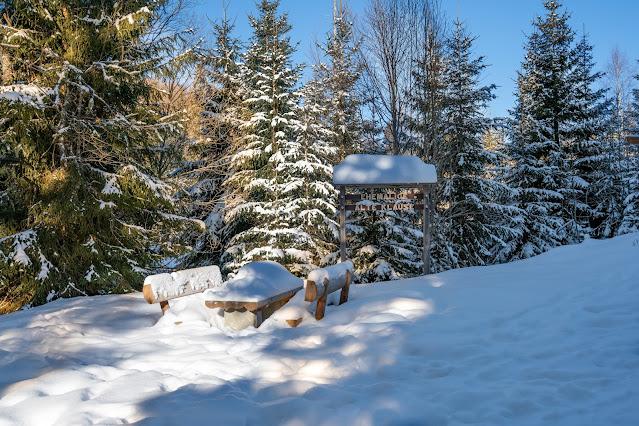 Winterwandern Mauth-Finsterau  Reschbachklause – Siebensteinkopf  Nationalpark Bayerischer Wald 03