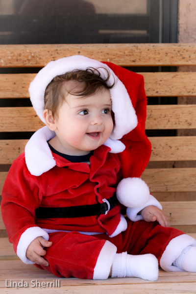 c001704c4 Funny Image Collection: Santa Babies Funny Pics with Funny Captions!