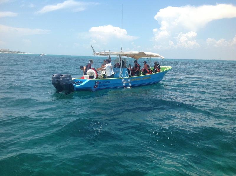 embarcacion para el tiburon ballena