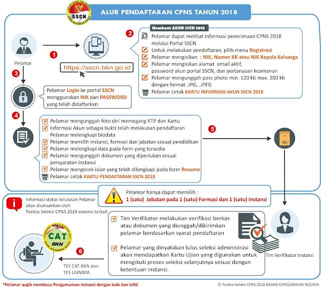 Aliran Sistem Informasi atau Alur Sistem Pendaftaran CPNS Tahun 2018