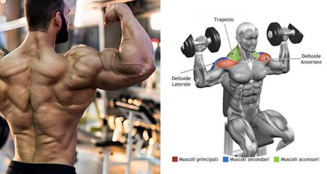 5 Ways to Get Wider Shoulders