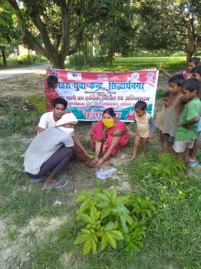 नेहरू युवा केन्द्र द्वारा किया गया वृक्षारोपण का कार्य