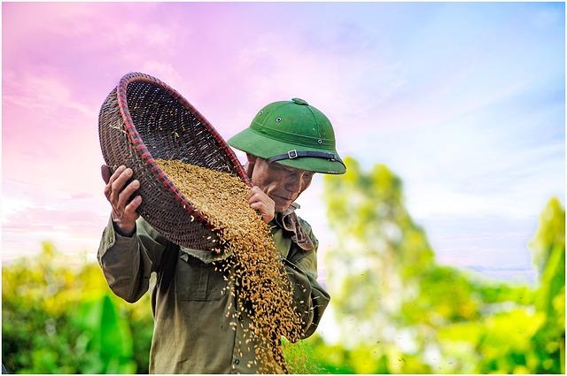 Pengertian Zakat pertanian dan perkebunan