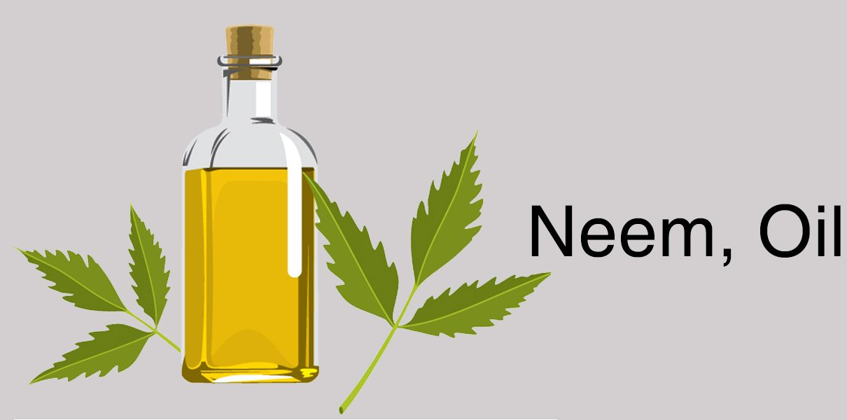 Neem Oil For Hair | The Girls Beauty Bible
