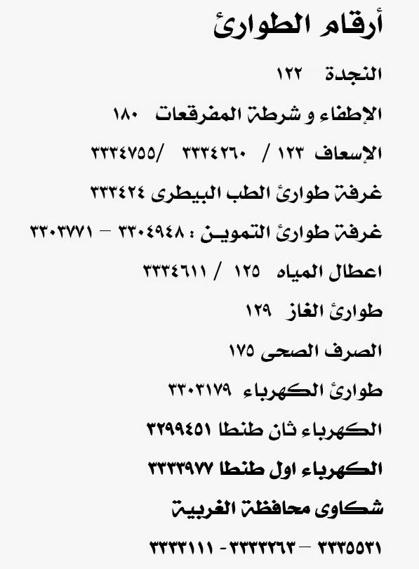 كومة مألوف مصر رقم طوارئ الكهرباء Comertinsaat Com