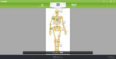 https://www.educaplay.com/en/learningresources/567334/html5/l_esquelet.htm#!