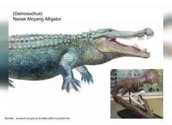 deinosuchus, nenek moyang alligator