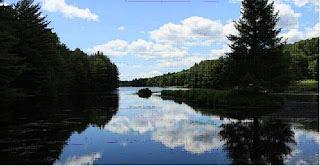 Día Mundial de la Tierra 2013: compromiso con el medio ambiente