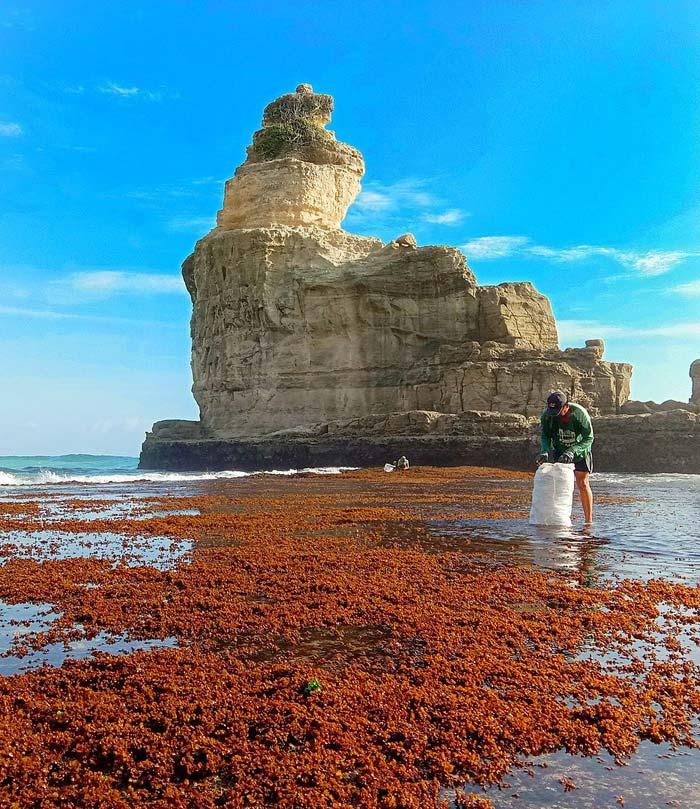 Fasilitas Wisata di Pantai Buyutan Pacitan