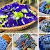 Sangatlah AWESOME!! Khasiat Bunga Telang Dan 6 Resepi Homemade Mudah Dan Sedap Boleh Masak Guna Bahan Ini.Mesti Ramai Yang Tidak Tahu Bukan?