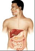 أعراض وعلامات التسمم