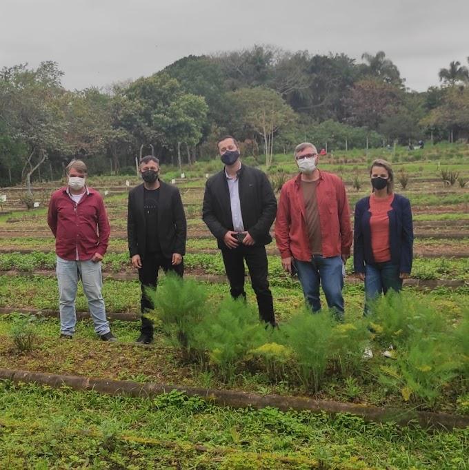 CACHOEIRINHA   Cristian Wasem quer distribuição gratuita de ervas medicinais através do projeto Farmácia Viva