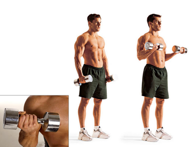 Frugal Finance Free Home Biceps Triceps Amp Forearms