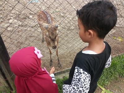 Cinta Mengalahkan Tantangan Mendidik Anak