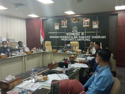 Komisi II DPRD Lampung Soroti Kelangkaan Pupuk