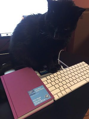 Black cat, purple sketchbook, and keyboard