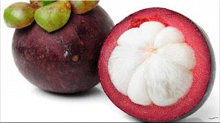 gambar buah manggis