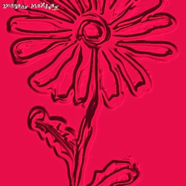 flor asteca - imagens mexidas