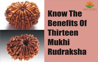 Know The Benefit Of Thirteen Mukhi Rudraksha