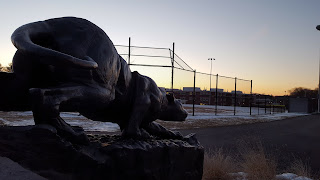 FHS Panther at the new high school fields donated by the Graci family