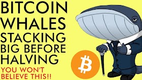 Bitcoin Whales STACKING BIG Before Halving – You Won't Believe How Much [incredible]