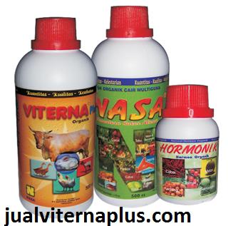 vitamin sangat cocok untuk petrnakan, aman bagi hewan ternak