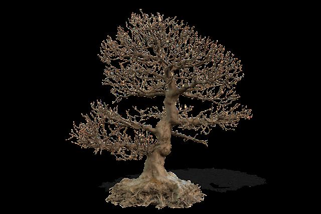 DEATH TREE 001