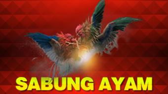 banner 1a1