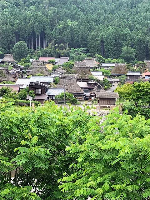 「枕川桜」から「かやぶきの里」までの散歩道