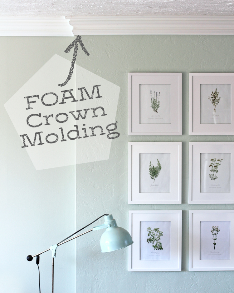 Everything You Want To Know About FOAM Crown Molding
