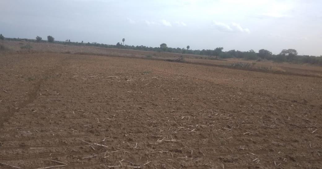 Agricultural Land / Farm Land / Godown / Industrial Land +91
