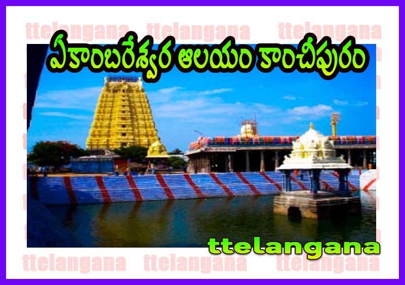 ఏకాంబరేశ్వర ఆలయం కాంచీపురం తమిళనాడు పూర్తి వివరాలు Ekambareshwara Temple Kanchipuram Tamil Nadu Full details
