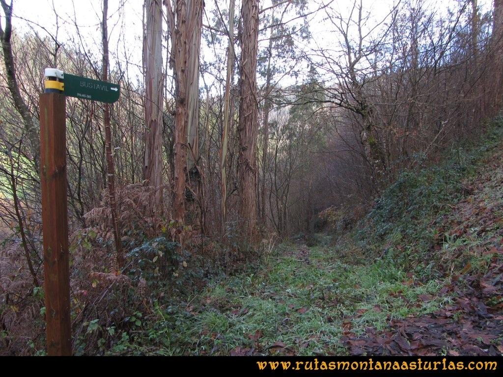 Senda de Bustavil, Tineo, PR AS-288: Cruce con carretera, cerca de sierra hidráulica