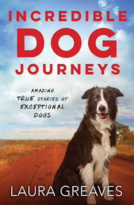 Book Cover of Incredible Dog Journeys by Laura Greaves