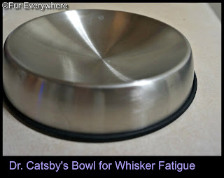 Dr. Catsby's Bowl for Whisker Fatigue