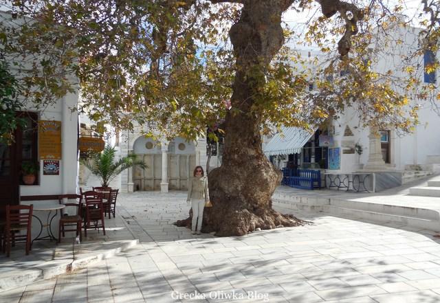 Pani pod platanem, Plac w Pyrgos Tinos Grecja