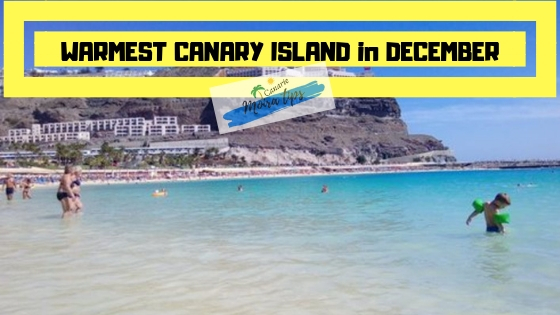 Warmest Canary island in January
