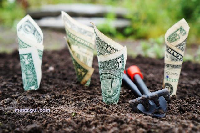 Cara Mudah Dan Menguntungkan Menjalankan Bisnis Tanah Bagi Pemula