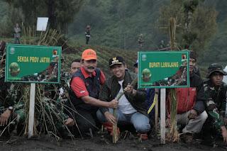 Cegah Erosi Lahan Pertanian, 50 Ribu Rumput Vetiver Ditanam di Sekitar Ranupani