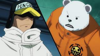 ワンピースアニメ ワノ国編   ハートの海賊団   ONE PIECE Heart Pirates  ペンギン ベポ