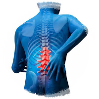 Lumbar Spinal Surgery - Microsurgery Method - Microsurgical Treatment Lumbar Disc Hernia - Microsurgical Treatment of Herniated Discs - Microsurgical treatment of lumbar disc herniation - Surgical Treatments for a Lumbar Herniated Disc - Microdiscectomy (Microdecompression) Spine Surgery - Lumbar Disc Microsurgery & Herniated Disc Treatments - Lumbar Disc Microsurgery at Istanbul - Lumbar Disc Microsurgery in Istanbul - Lumbar Disc Microsurgery in Turkey - Lumbar Disc Herniation - Lumbar Disc Microsurgery - Herniated Disc — Surgical Treatment for Herniated Disc