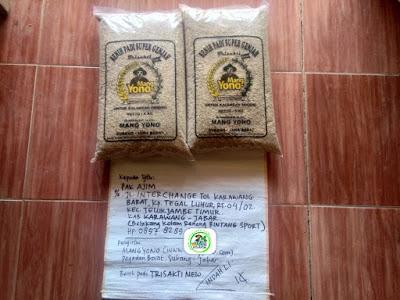 Benih padi yang dibeli   AJIM Karawang, Jabar. (Sebelum packing karung ).