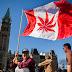 Senado do Canadá legaliza uso da maconha