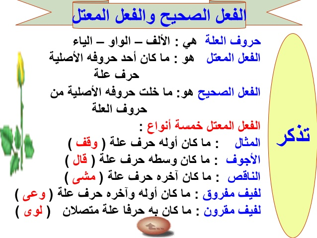 الفعل المعتل لغة عربية