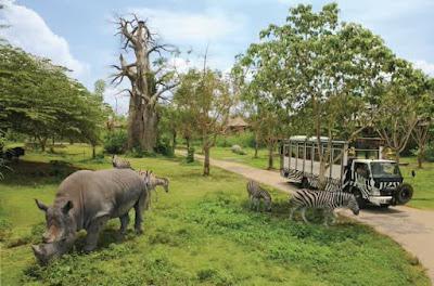 Tempat Wisata di Puncak Bogor yang Menawan