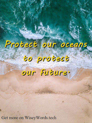 World Oceans Day Quotes,Slogans,Greetings