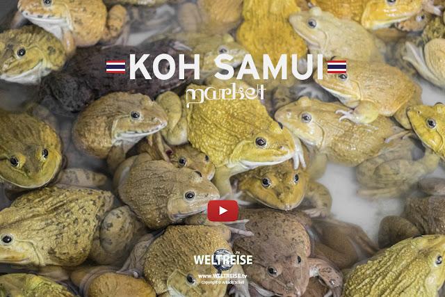 KULTURSCHOCK Thailand! Bangrak Market KOH SAMUI