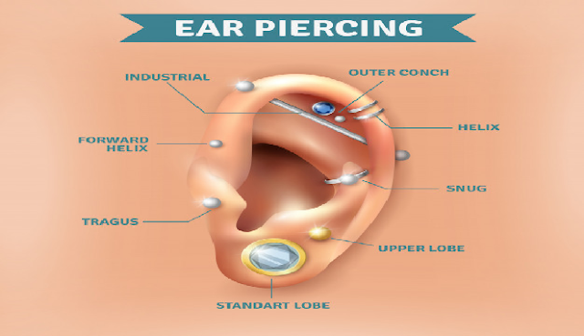 Bagian-bagian sistem pendengaran manusia