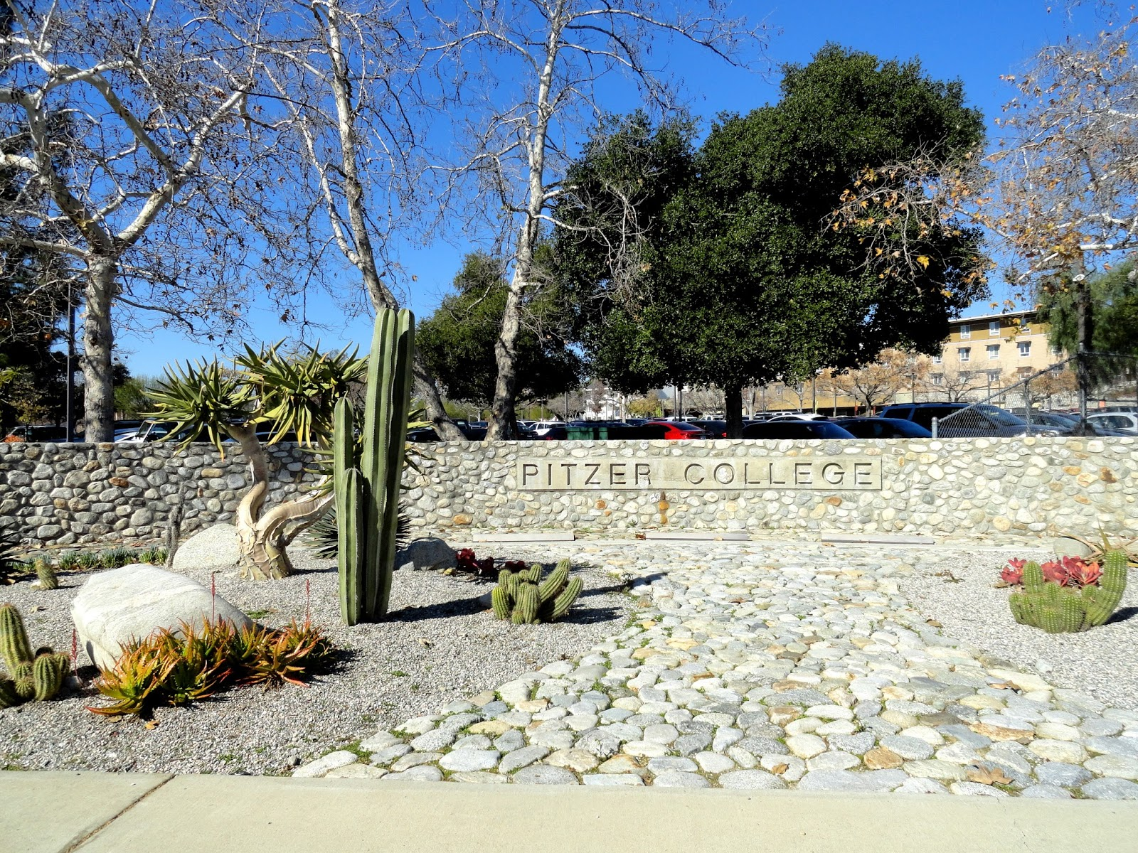 danger garden: Walking the Pitzer College Campus, part one...